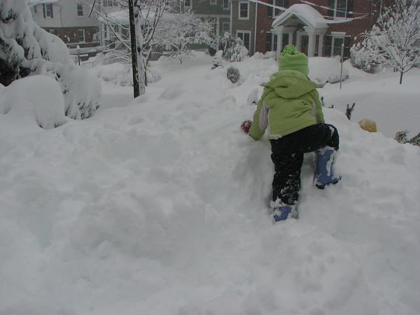 02.10 - Snow