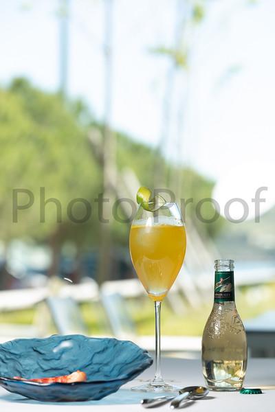 BIRDSONG Schweppes Cocktails 087.jpg