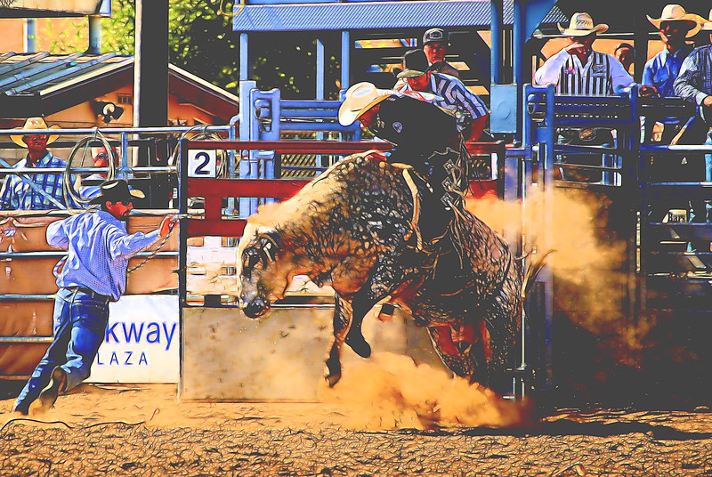 LSR Bull Exiting Chute KC_Topaz.jpg