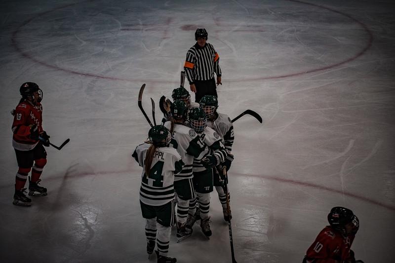 Holy Family Girls Varsity Hockey vs. Mound Westonka, 12/10/19: Holy Family Girls Varsity Hockey celebrates a goal.