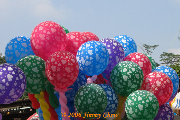 Vesak Day 2006