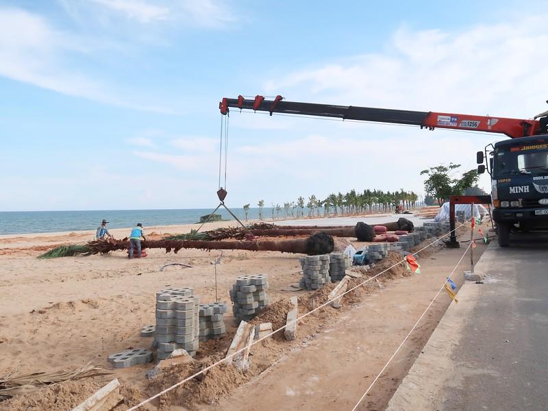 NovaWorld Phan Thiet tree planting