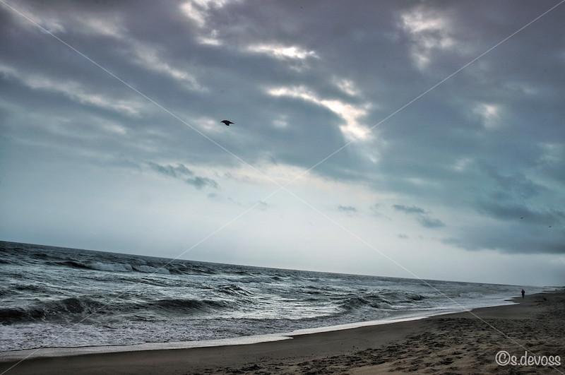 beachscape_0426HDR Wmark.jpg