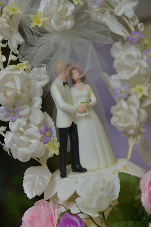 Lisa's Wedding Day