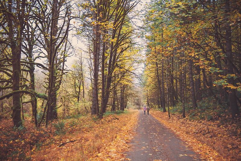 autumnwalk.jpg