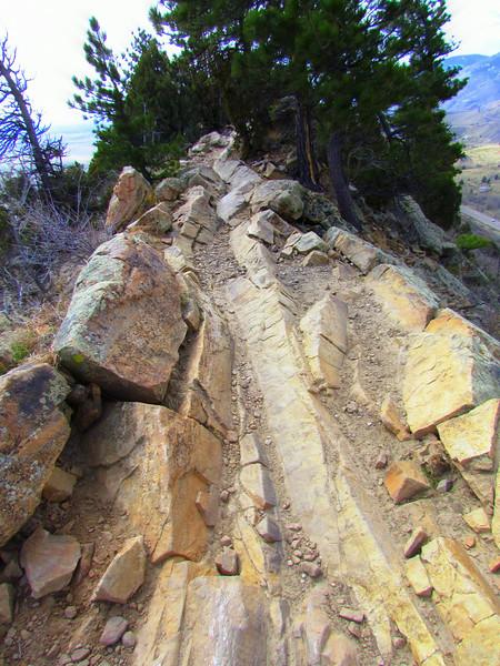 Local Hikes (934).JPG
