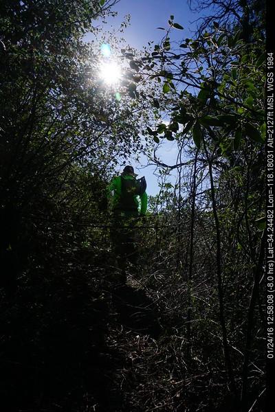 20160124033-Ken Burton Trailwork.JPG
