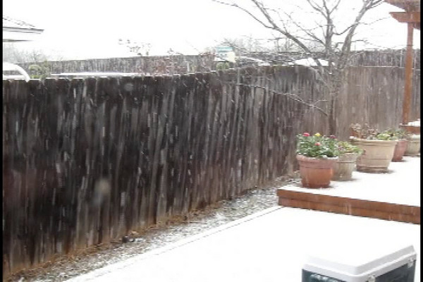 snow2010.mpg