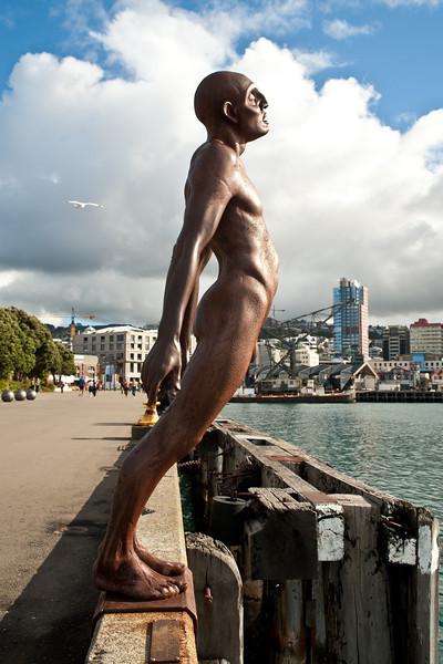 Wellington10798.jpg