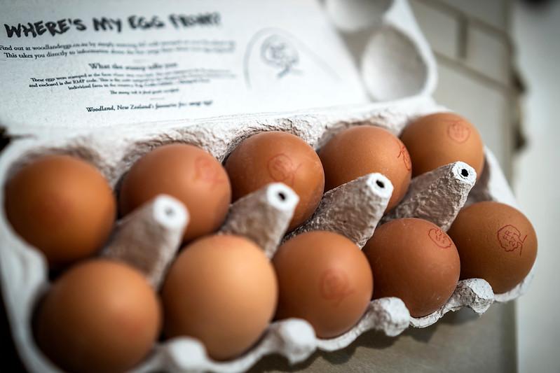 Eggs 95.jpg