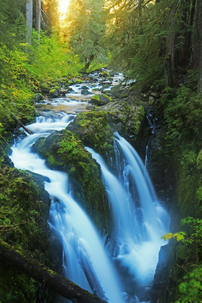 The cascading Sol Duc Falls in the Olympic National Park