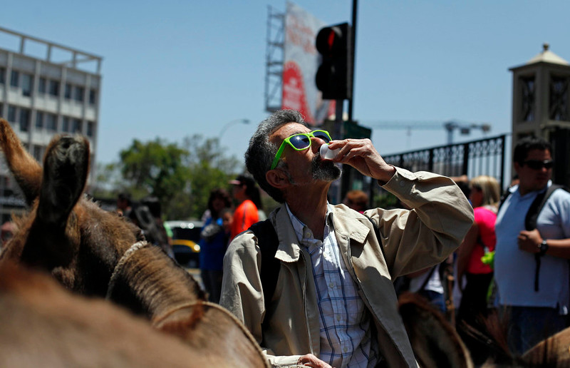 . In this Dec. 15, 2014 photo, a man stops to drink fresh donkey milk in the street in Santiago, Chile. The use of donkey�s milk has persisted in some parts of the world. Even Pope Francis has said he drank it as a boy in Argentina, prompting an Italian company that produces the milk to give him two donkeys recently. (AP Photo/Luis Hidalgo)