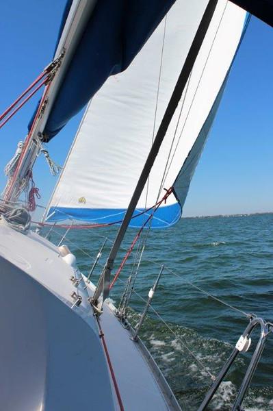 Kim's picture-sail 3-8.jpg