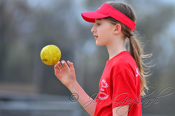 April 24 - Yogurtland_vs_Lakeland_Surveying-Softball