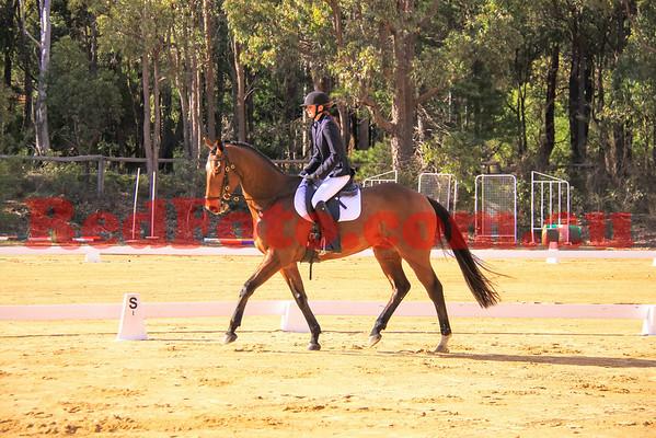 2014 06 29 Darlington Pony Club Dressage Zamia Arena