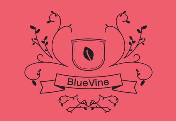 BlueVine Holiday Party 2019