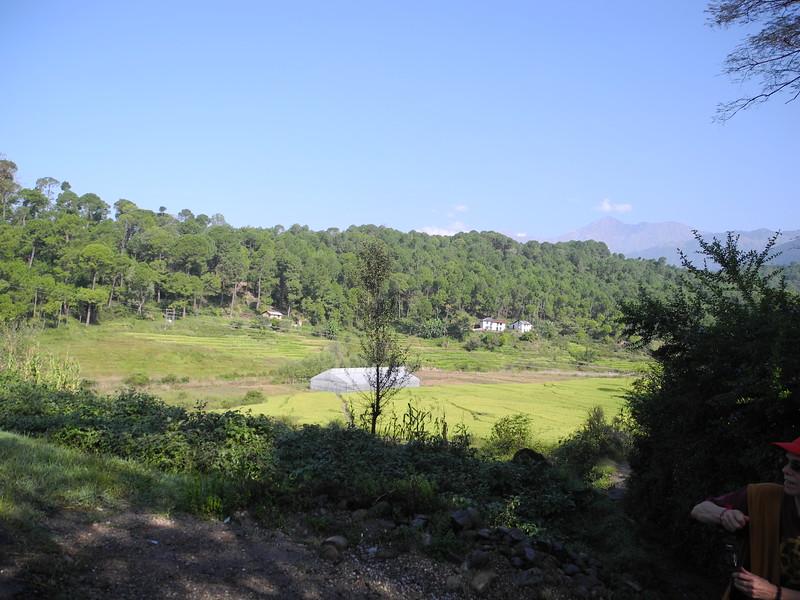 india2011 413.jpg
