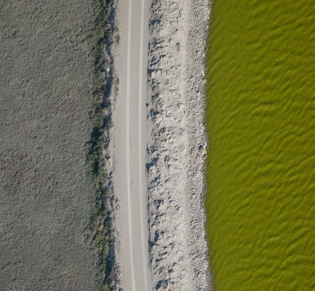 Salt Pond #32