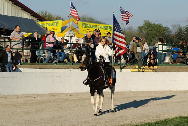 2009 Gaited Mule