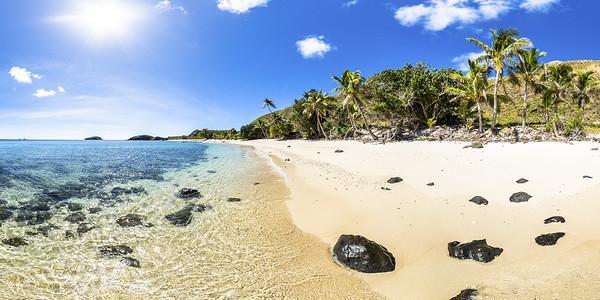 Palm Trees at Paradise Beach
