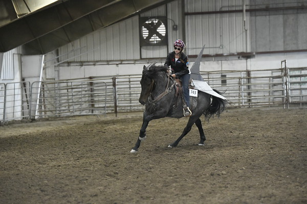 Equestrian, Horse Photography