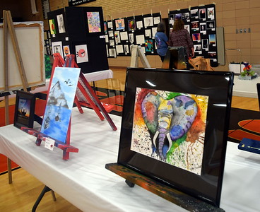 RE-1 Valley District Art Expo