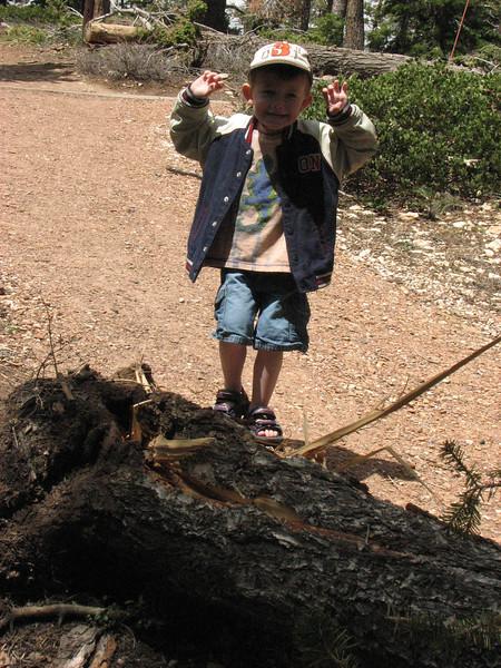 Bryce Canyon Vacation-36.jpg