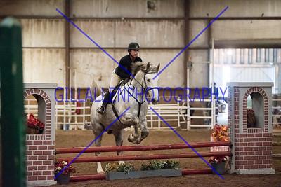 Hobby Horse Farm