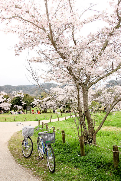Japan travel is even better when you bike through the countryside.