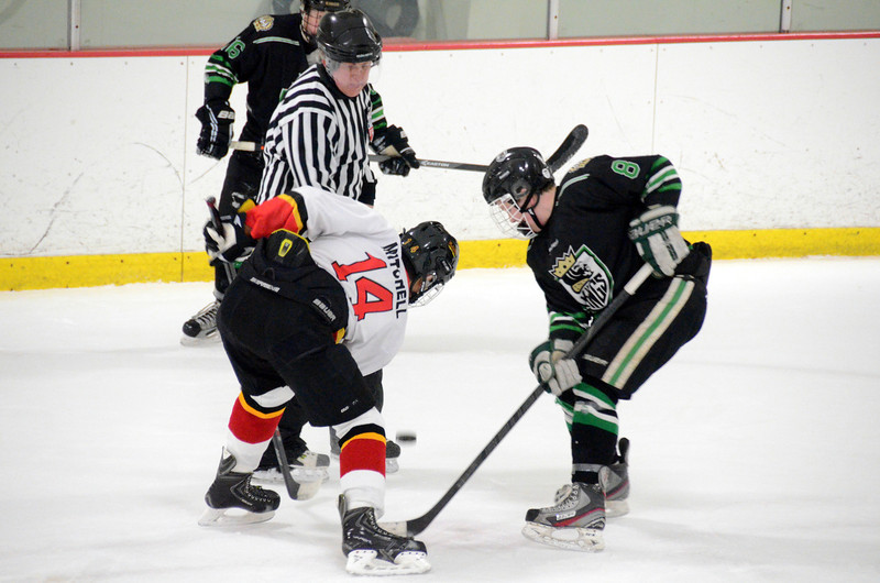 140111 Flames Hockey-199.JPG