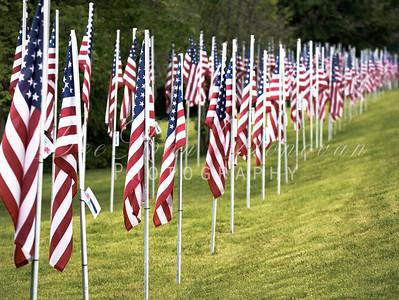 Veterans Memorial  Statues and Flags