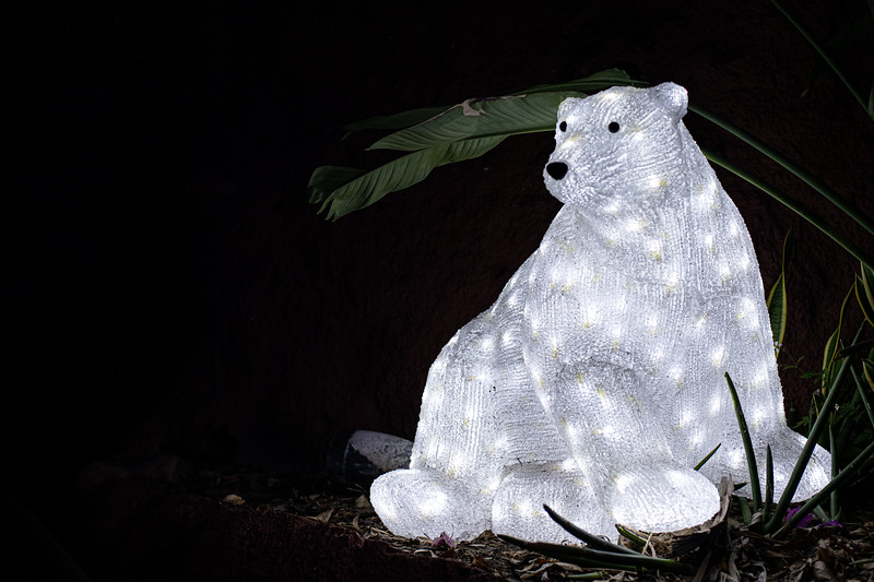 ZooTampa_Christmas-115.jpg