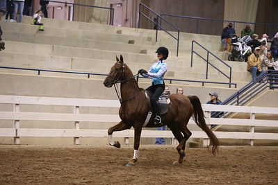 64. Academy Equitation 10 & Under WT - Advanced