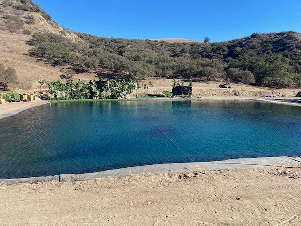 Blue water 5.jpg
