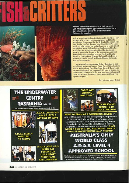 Red Indianfish_Page_3.jpg