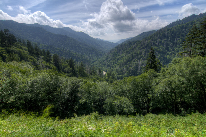 A view along the gap in the mountains where the main highway travels at the Great Smoky Mountains National Park in Gatlinburg, TN on Sunday, August 4, 2013. Copyright 2013 Jason Barnette