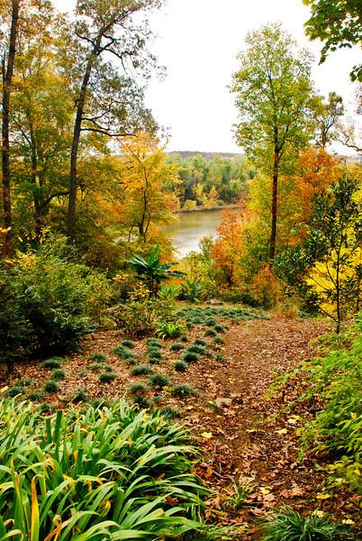 Arboretum October 2013 anacostia.jpg