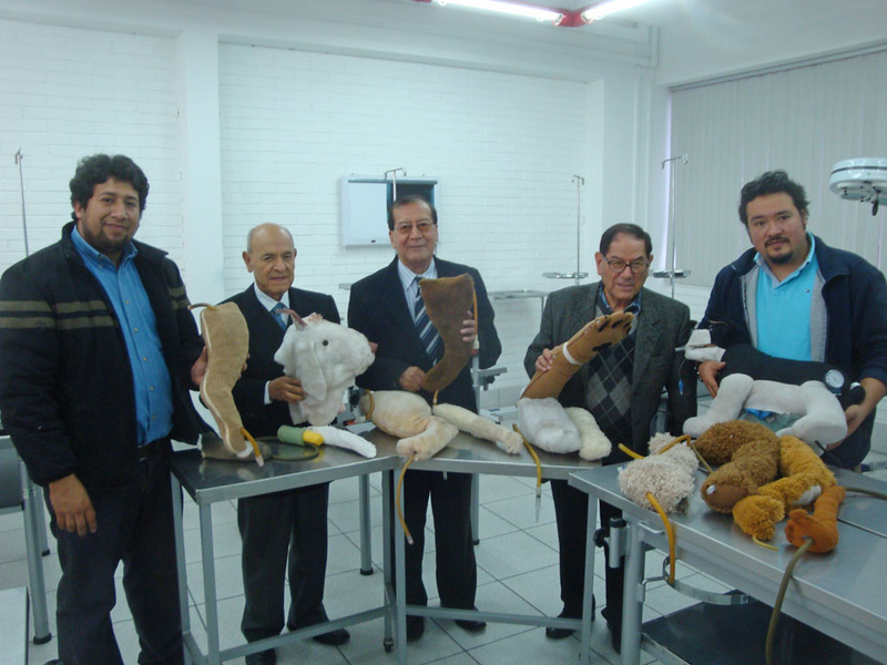 Because such mannequins are difficult to afford in Peru, the faculty have the vet students make their own canine venipuncture (blood draw) mannequins, shown here.