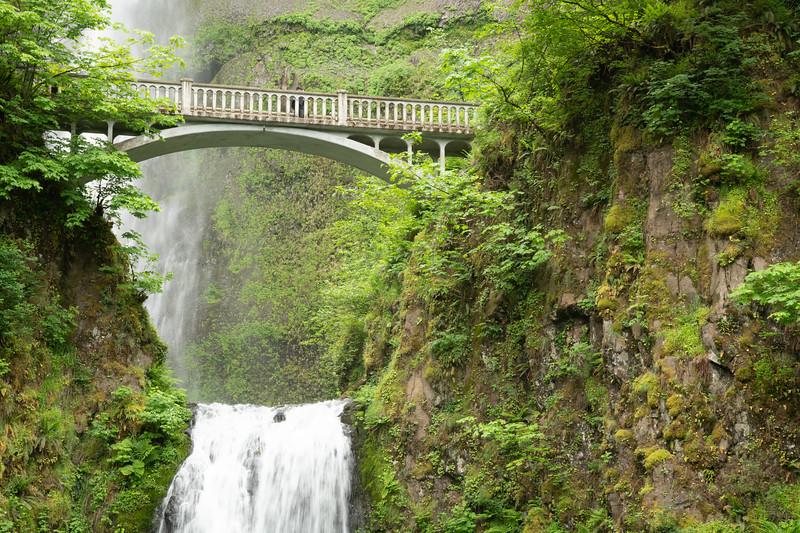 Multnomah Falls-9.jpg
