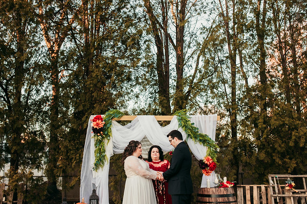 Lauren + Brandon | Backyard Micro Wedding | 11.28.2020