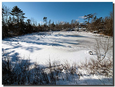 Winter day in Cole Harbour