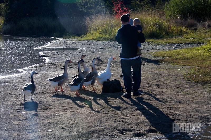Stafford Family Photos Nov 08