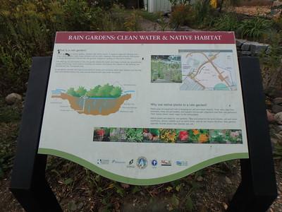 NGO69 - Cylburn Arboretum Rain Garden