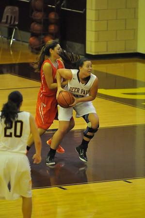 Lady Deer Basketball 14-15