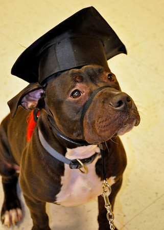 Charley's Graduation Day!
