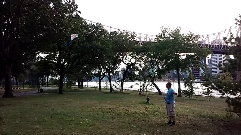 2016-09-03 ray kite