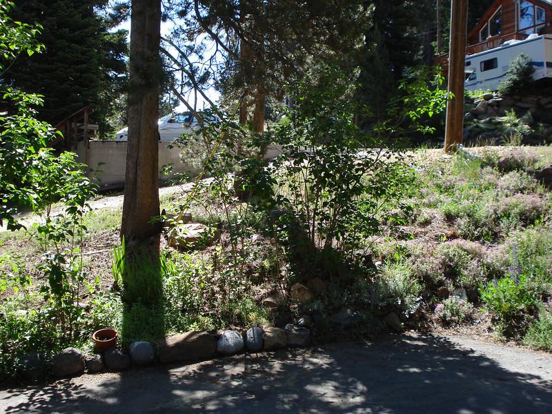 Corner Driveway