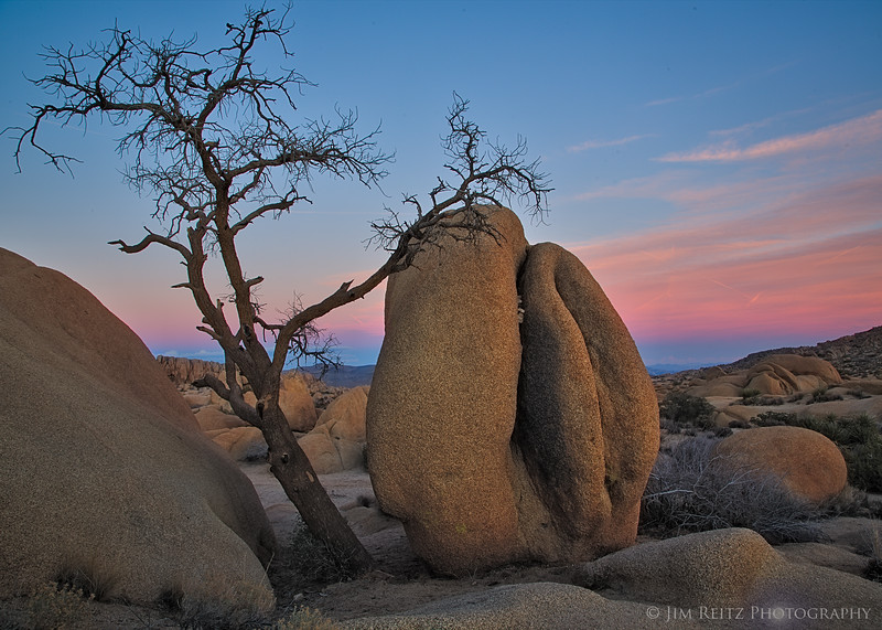 Sunset - Joshua Tree National Park