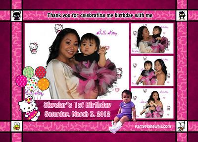 Skyelar's 1st Birthday (Multi Photo Collage)