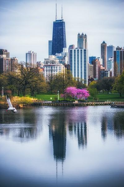 chicago day (1 of 1)-16.jpg